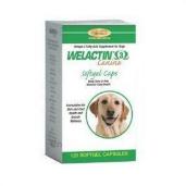 Welactin Canine Softgels