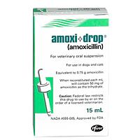Amoxi Drops Amoxicillin 15 Ml Vetdepotcom