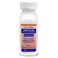 how to take amoxicillin 500mg for sinus infection