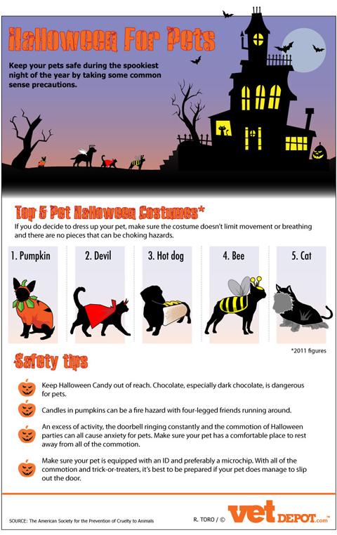 Halloween Pets Infographic Halloween Pet Safety