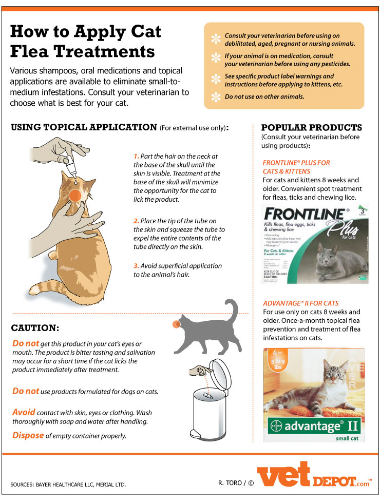 How to apply Cat flea treatments