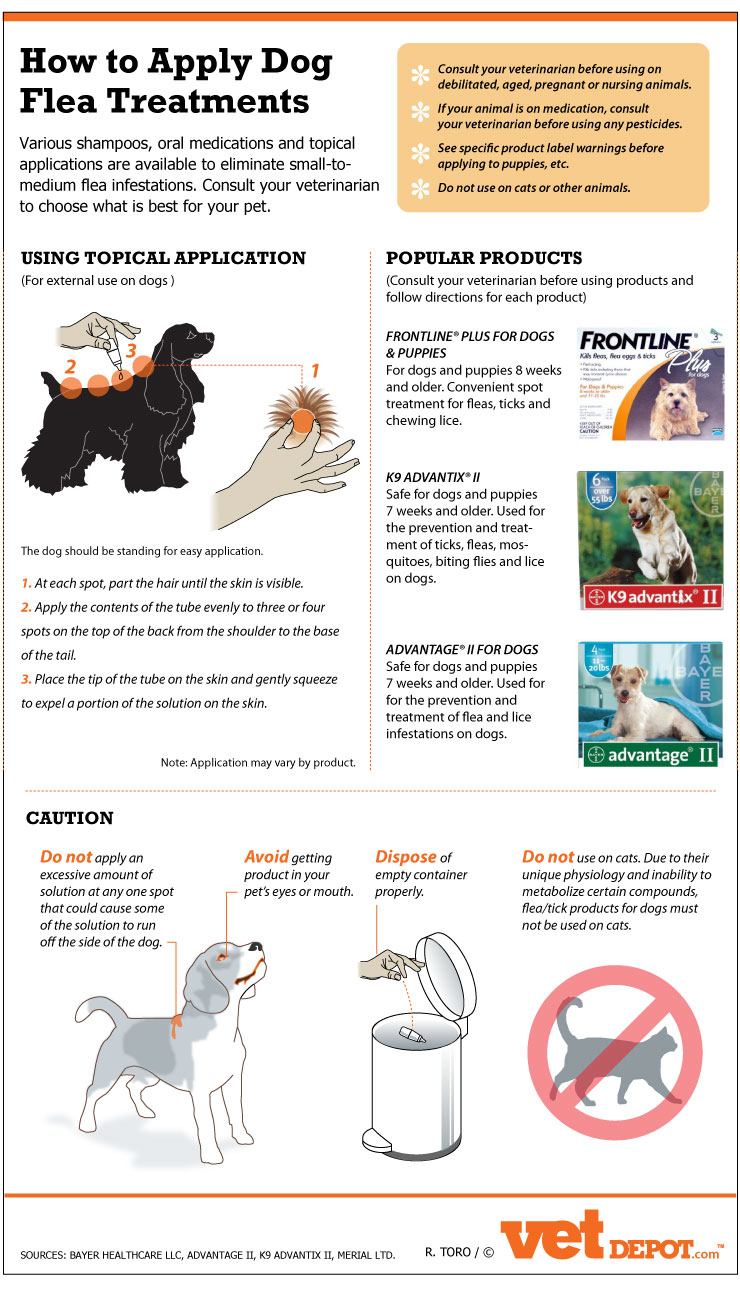 How to apply Dog flea treatments