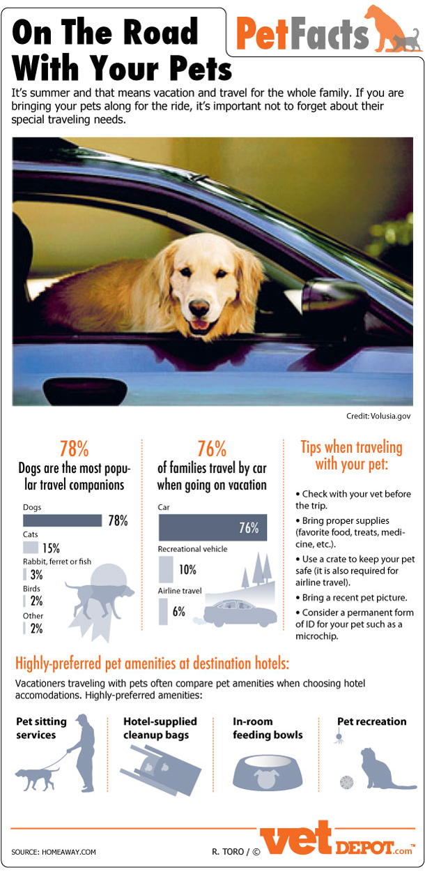 On the road with your pets