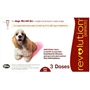 Revolution for Dogs 21-40 lbs, 3 Pack (Red)