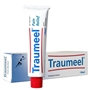 Traumeel Ointment, 100 gm