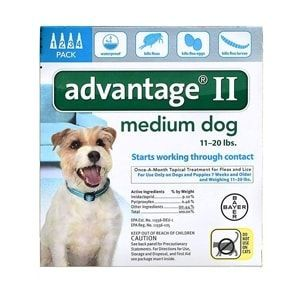 Advantage II for Dogs 11-20 lbs, Teal, 4 Pack