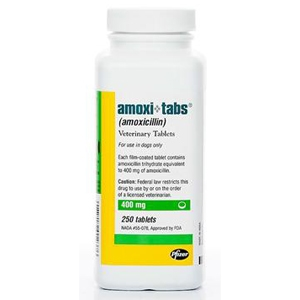 Amoxicillin 400 mg, 250 Tablets