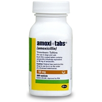 Amoxicillin 50 mg, 500 Tablets