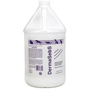 DermaBenSs Soapless Shampoo with Moisturizers, Gallon