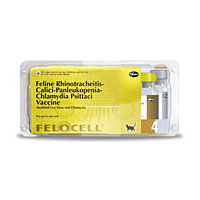 Felocell 4, 25 Single Dose Vials