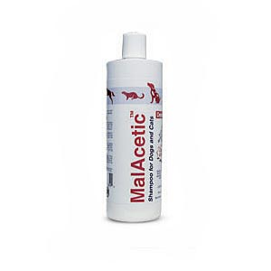 MalAcetic Shampoo, 16 oz