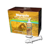 Marquis Antiprotozoal Oral Paste, 127 gm, 4 Syringes