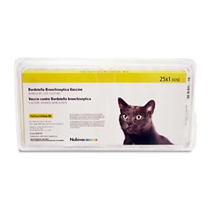 Protex-Bb Feline Bordetella 25 Single Dose Vials