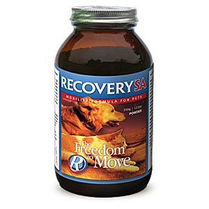 Recovery SA Freedom To Move, Powder, 150 gm