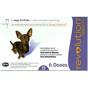 Revolution for Dogs 5-10 lbs, Purple, 6 Pack