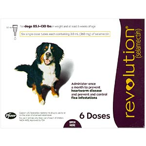Revolution for Dogs 85-130 lbs, Plum, 6 Pack