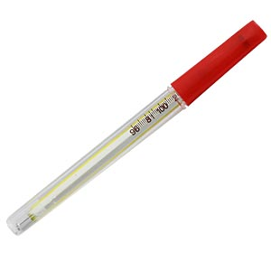 Thermometer, 4 inch with case