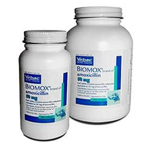 Biomox 100 mg, 500 Tablets (amoxicillin)