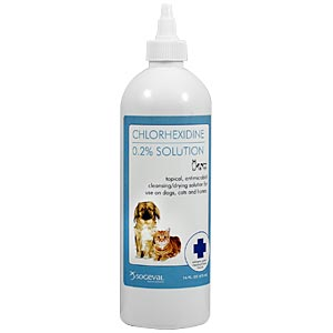 Chlorhexidine Flush 0.2% Solution, 16 oz