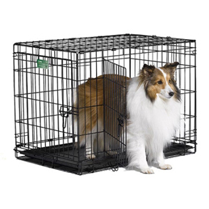 "iCrate Double Door Dog Crate, 30"" x 19"" x 21"""
