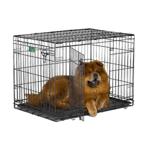 "iCrate Double Door Dog Crate, 36"" x 23"" x 25"""