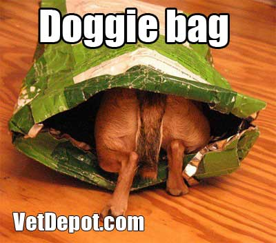 VetDepot caption contest winner 15