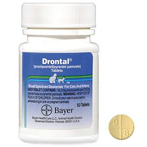 Drontal Feline 50 Tablets For Cats Wormer Medication