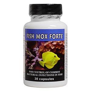 Fish Mox Forte Amoxicillin 500 Mg 30 Capsules