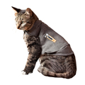 Cat clothing and apparel