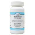 Cat Pancreatic Enzymes