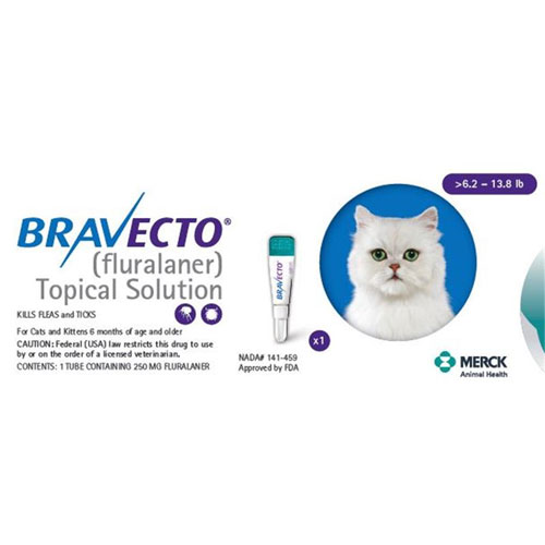Bravecto Topical Solution For Cats 6 2 13 8 Lbs 250 Mg