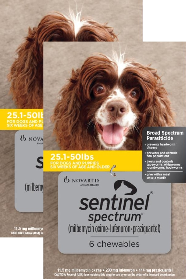Sentinel Spectrum for Dogs 26-50 lbs, 12 Month (Yellow)