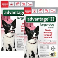Advantage II for Dogs 21-55 lbs, Red, 12 Pack