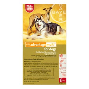 Advantage Multi For Dogs and Puppies 20-55 lbs, Red, 6 Pack