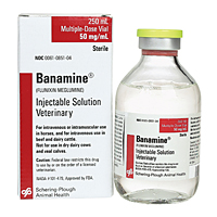 Banamine (Flunixin Meglumine) Injectable, 50 mg/mL, 250 mL
