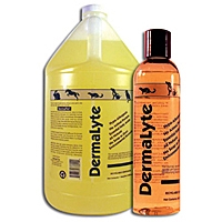 DermaLyte Shampoo, Gallon