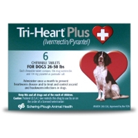 Tri-Heart Plus for Dogs 26-50 lbs, 6 Pack (Green)