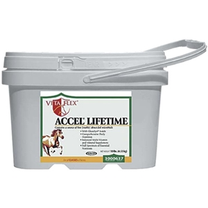 Accel Lifetime, 10 lbs