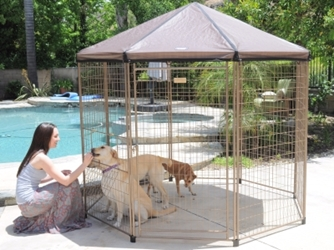 Advantek Pet Pavillion Pet Gazebo Kit