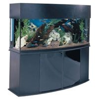 Aqueon Bowfront Aquarium Black Trim, 175 gal
