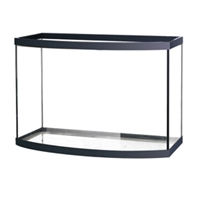 Aqueon Bowfront Aquarium Black Trim, 46 gal