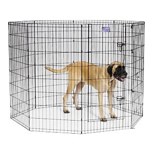 "Black E-Coat Exercise Pen, 48"" x 24"""