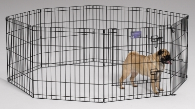 Black Exercise Pen 24X24