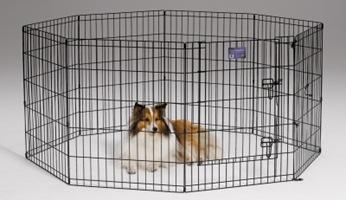 Black Exercise Pen 24X30