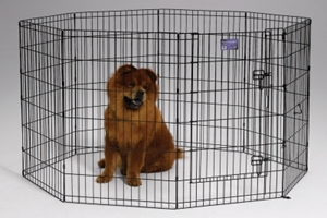 Black Exercise Pen 24X36