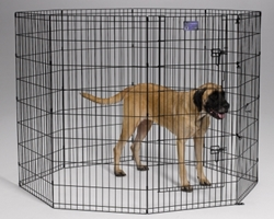 Black Exercise Pen 24X48