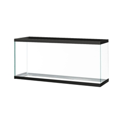 Black Trim Aquarium 55 Gal
