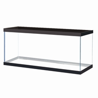 Black Trim Aquarium 75 Gal