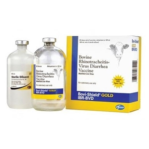 Bovi-Shield Gold IBR-BVD - 50 ds Vial
