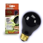 Bulb Night Black Incandescent Bulb 50W Boxed